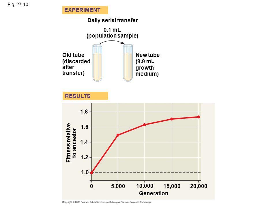 0.1 mL (population sample) Fitness relative to ancestor