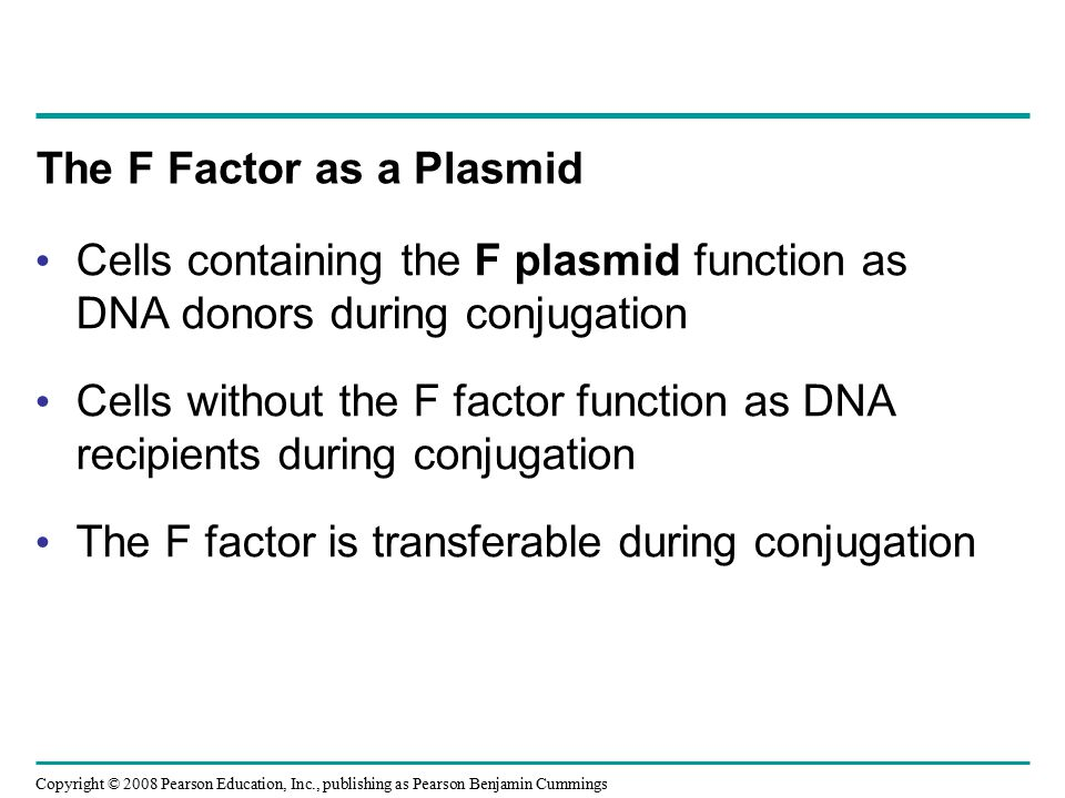 The F Factor as a Plasmid