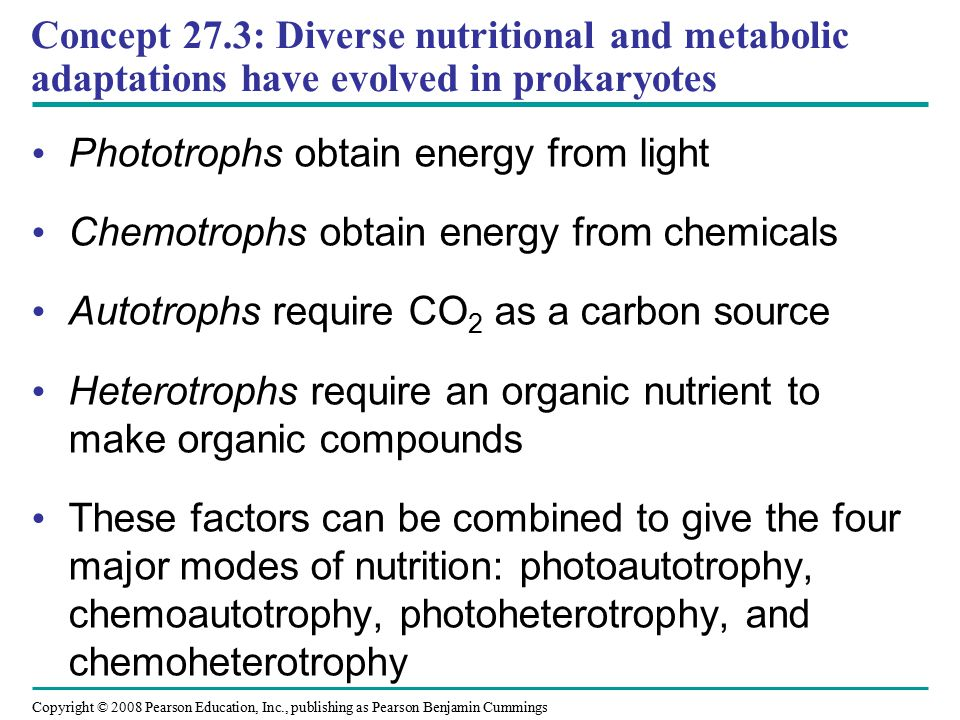 Concept 27.3: Diverse nutritional and metabolic adaptations have evolved in prokaryotes