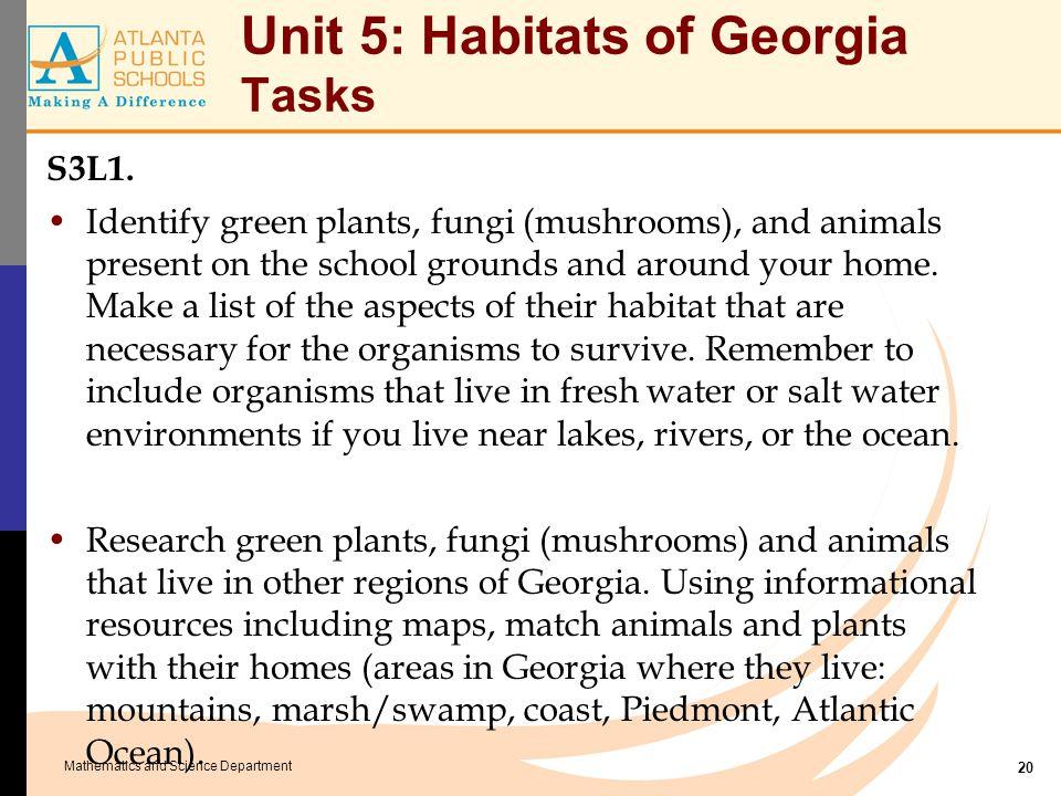 Unit 5: Habitats of Georgia Tasks