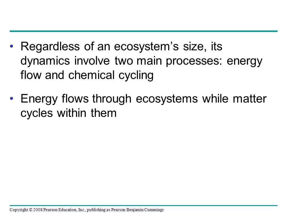 Regardless of an ecosystem's size, its dynamics involve two main processes: energy flow and chemical cycling
