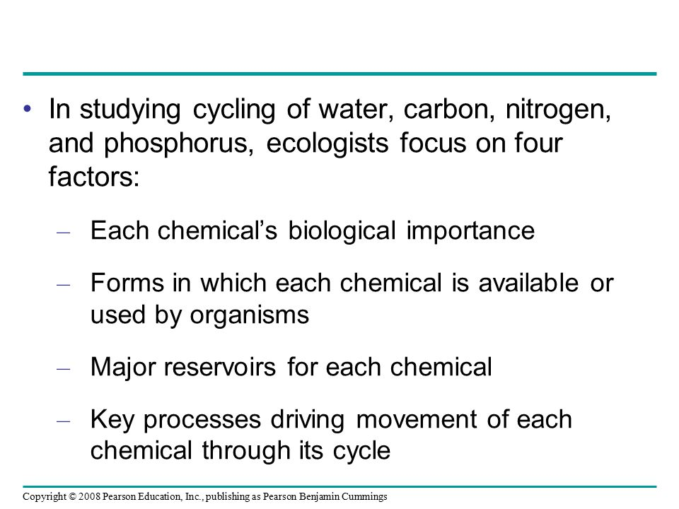In studying cycling of water, carbon, nitrogen, and phosphorus, ecologists focus on four factors: