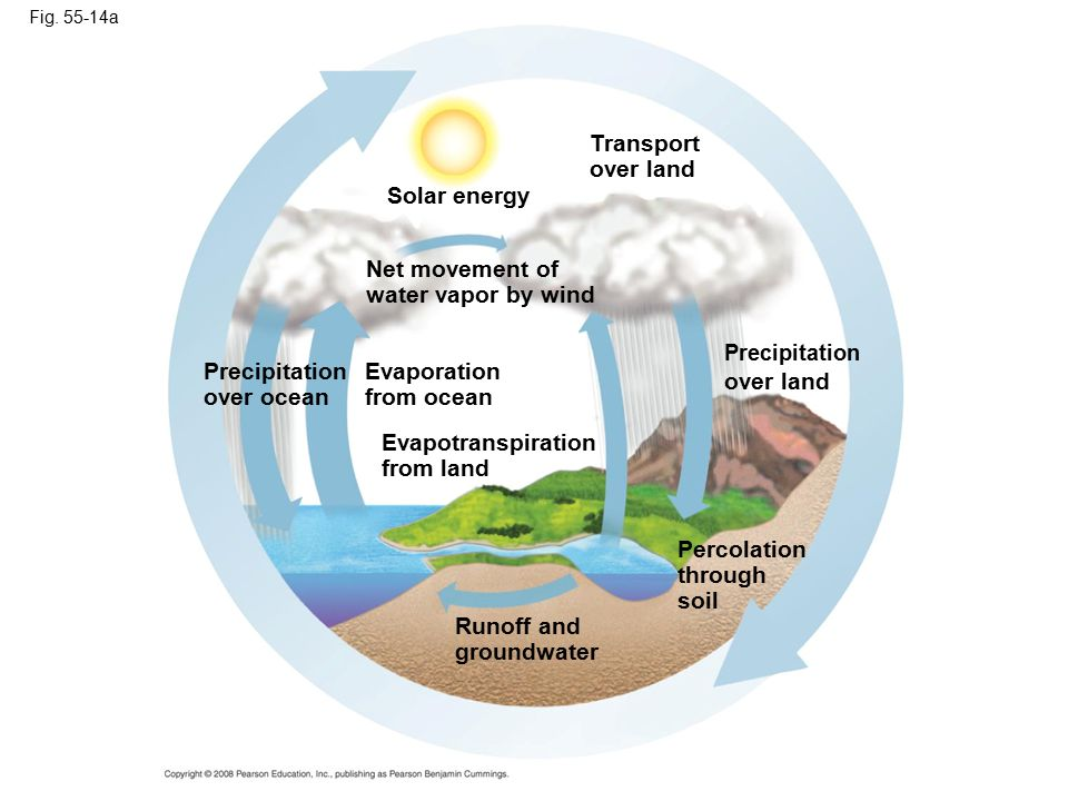 Transport over land Solar energy Net movement of water vapor by wind