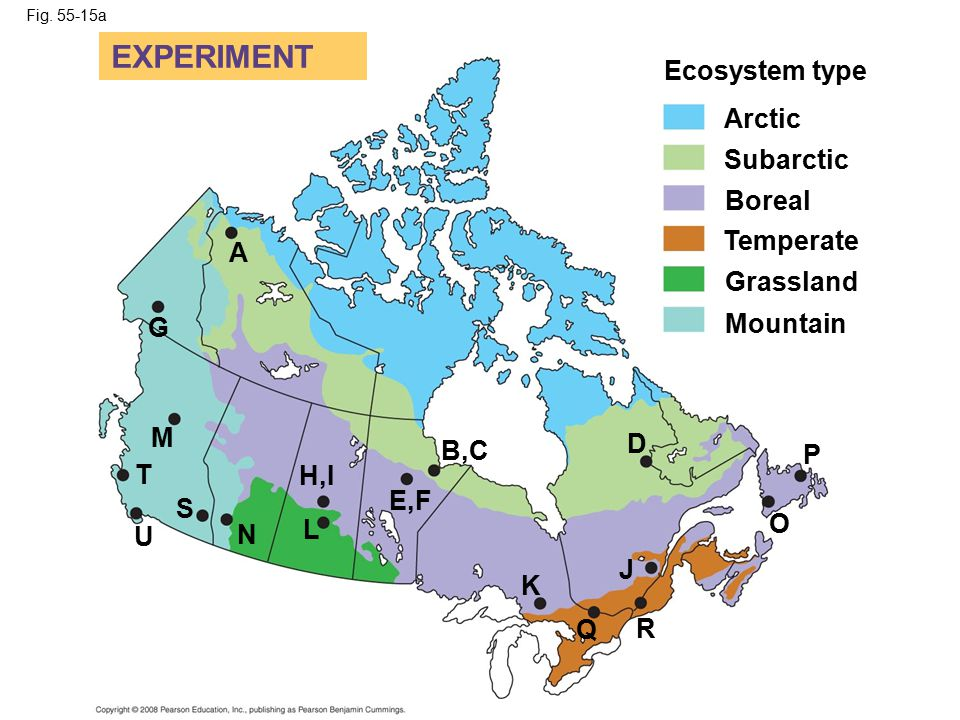 EXPERIMENT Ecosystem type Arctic Subarctic Boreal Temperate A
