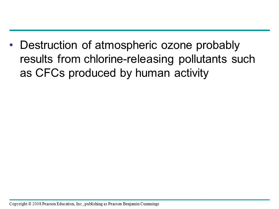 Destruction of atmospheric ozone probably results from chlorine-releasing pollutants such as CFCs produced by human activity