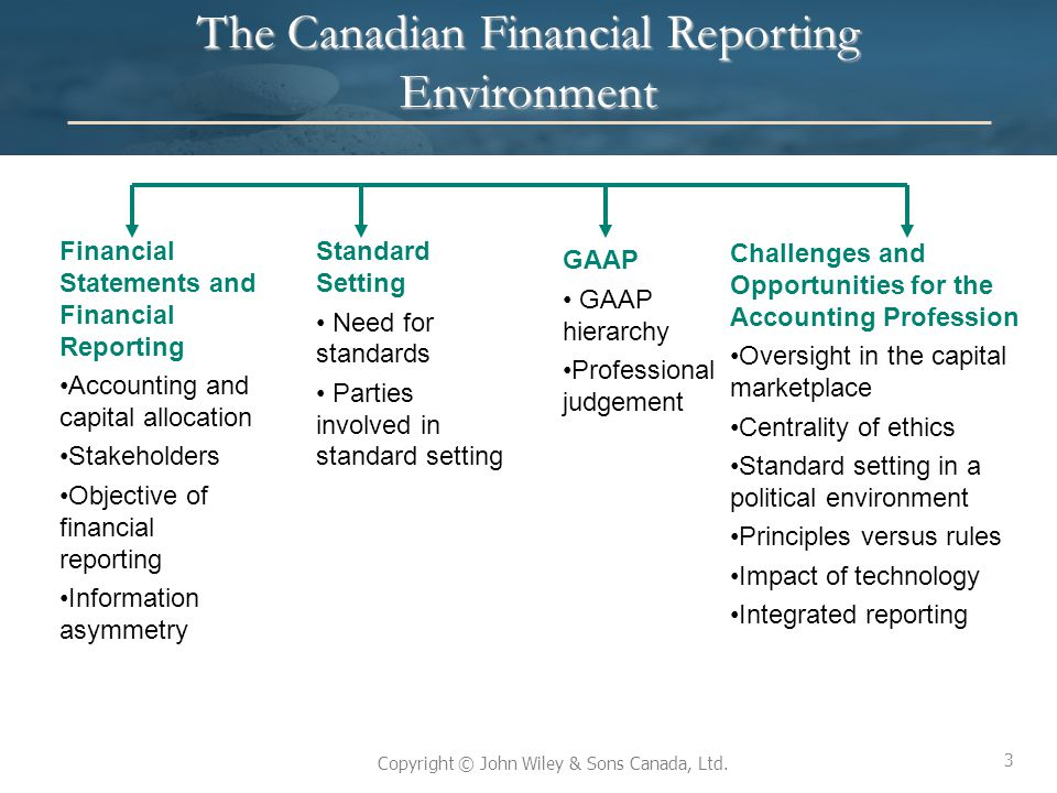 The Canadian Financial Reporting Environment