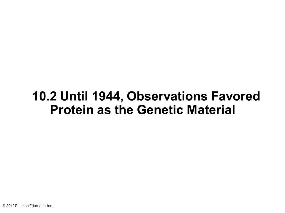 10.2 Until 1944, Observations Favored Protein as the Genetic Material