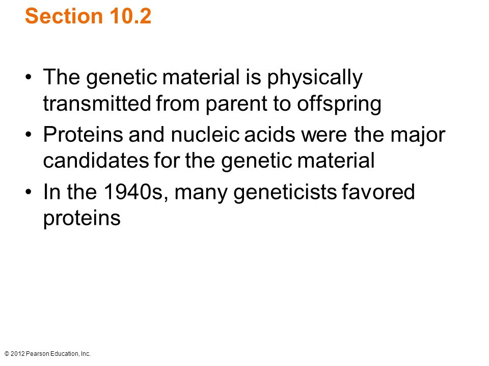 In the 1940s, many geneticists favored proteins