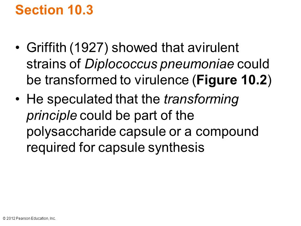 Section 10.3 Griffith (1927) showed that avirulent strains of Diplococcus pneumoniae could be transformed to virulence (Figure 10.2)