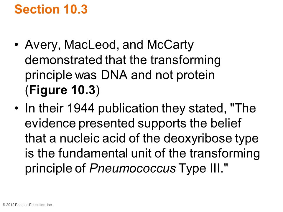 Section 10.3 Avery, MacLeod, and McCarty demonstrated that the transforming principle was DNA and not protein (Figure 10.3)