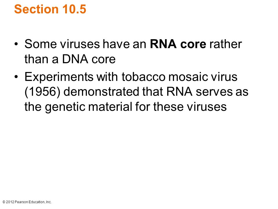 Some viruses have an RNA core rather than a DNA core