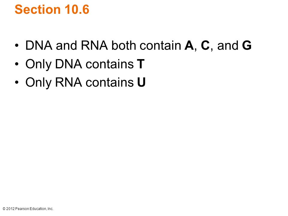 DNA and RNA both contain A, C, and G Only DNA contains T