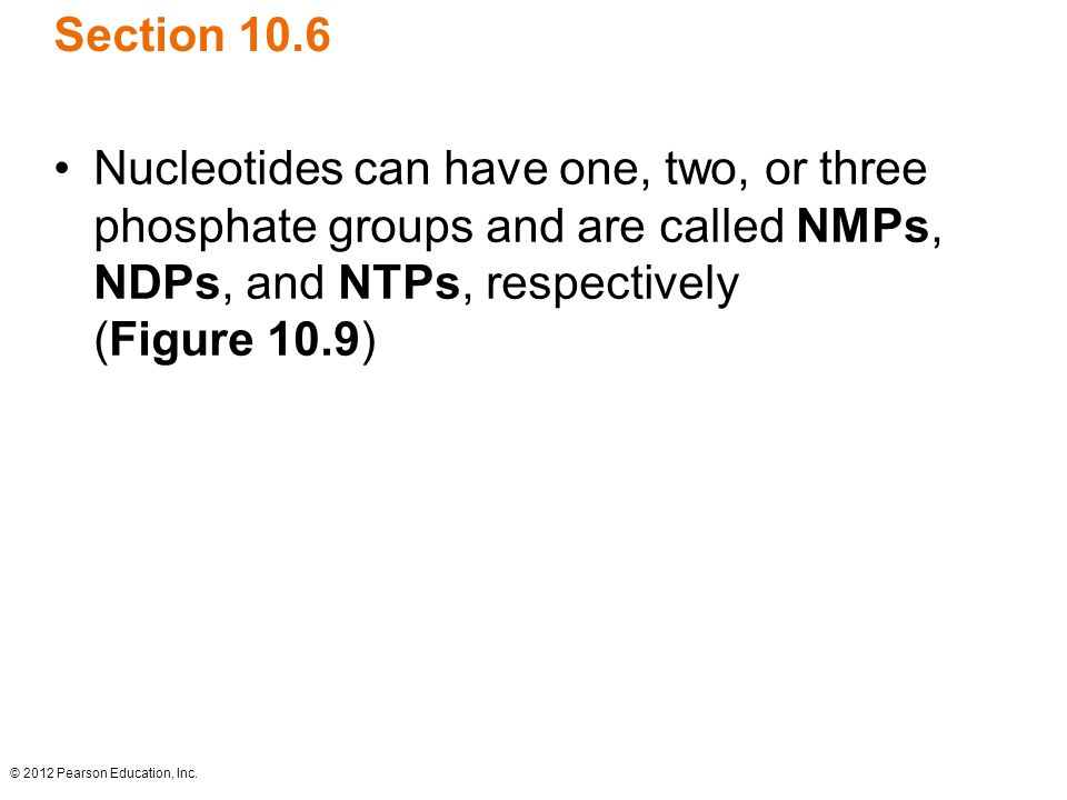 Section 10.6 Nucleotides can have one, two, or three phosphate groups and are called NMPs, NDPs, and NTPs, respectively (Figure 10.9)
