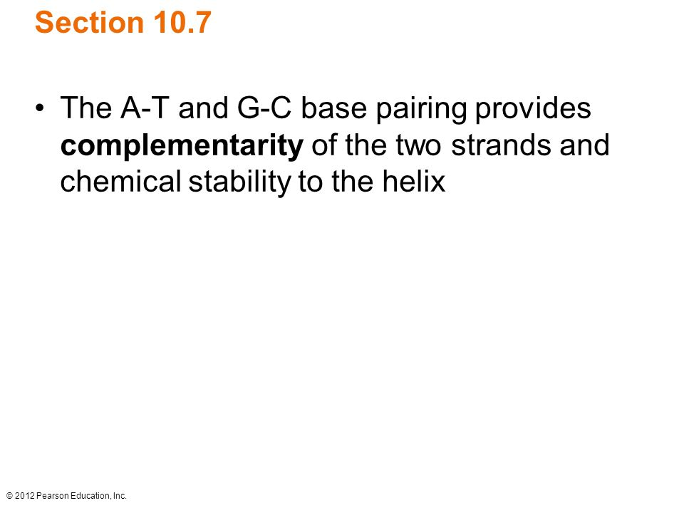 Section 10.7 The A-T and G-C base pairing provides complementarity of the two strands and chemical stability to the helix.