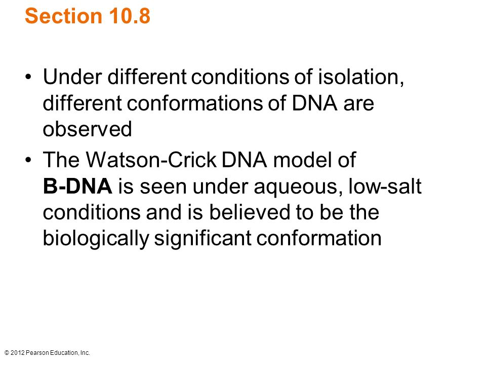 Section 10.8 Under different conditions of isolation, different conformations of DNA are observed.