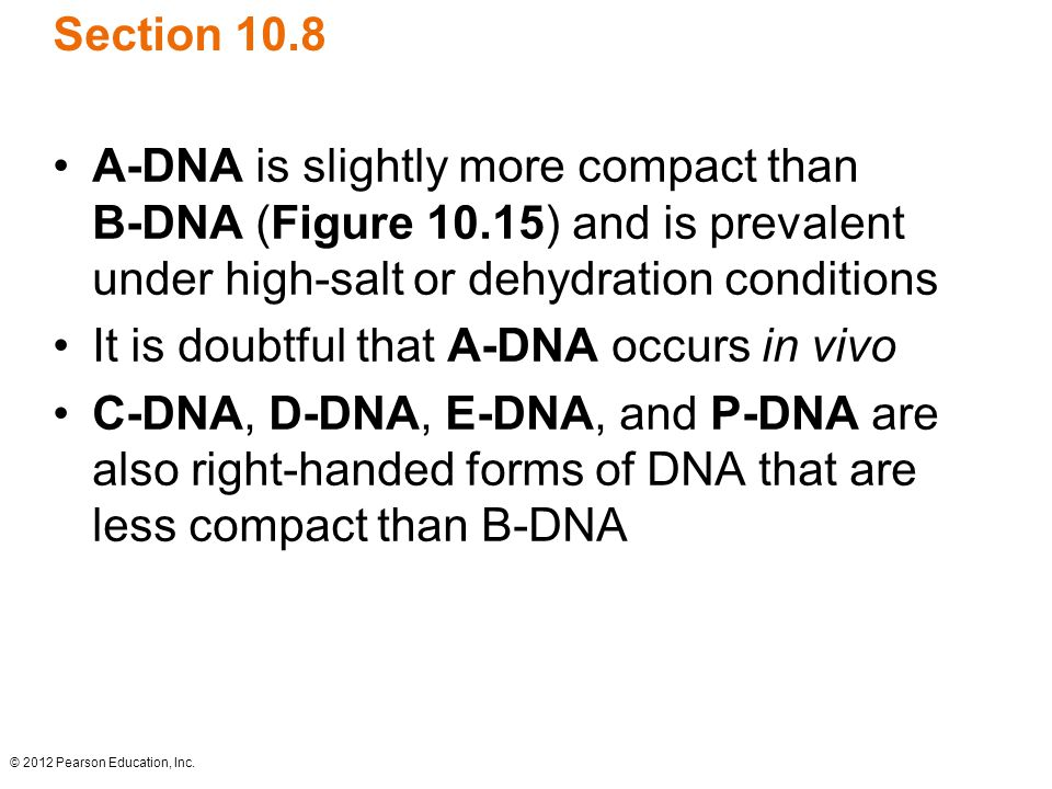 It is doubtful that A-DNA occurs in vivo