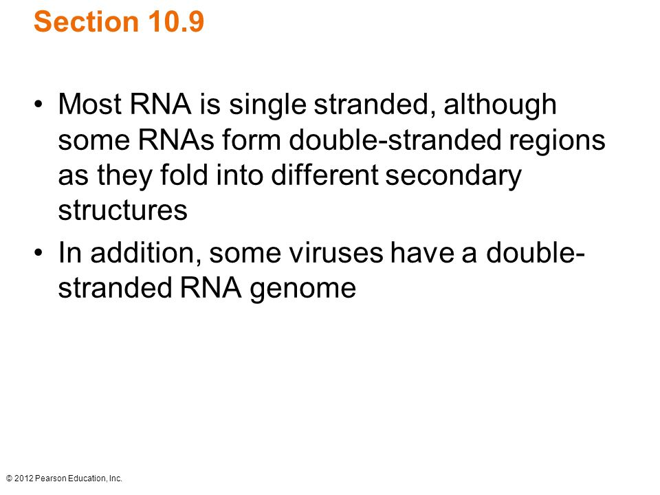 In addition, some viruses have a double-stranded RNA genome