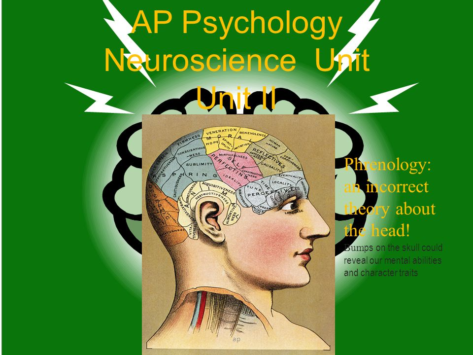AP Psychology Neuroscience Unit Unit II