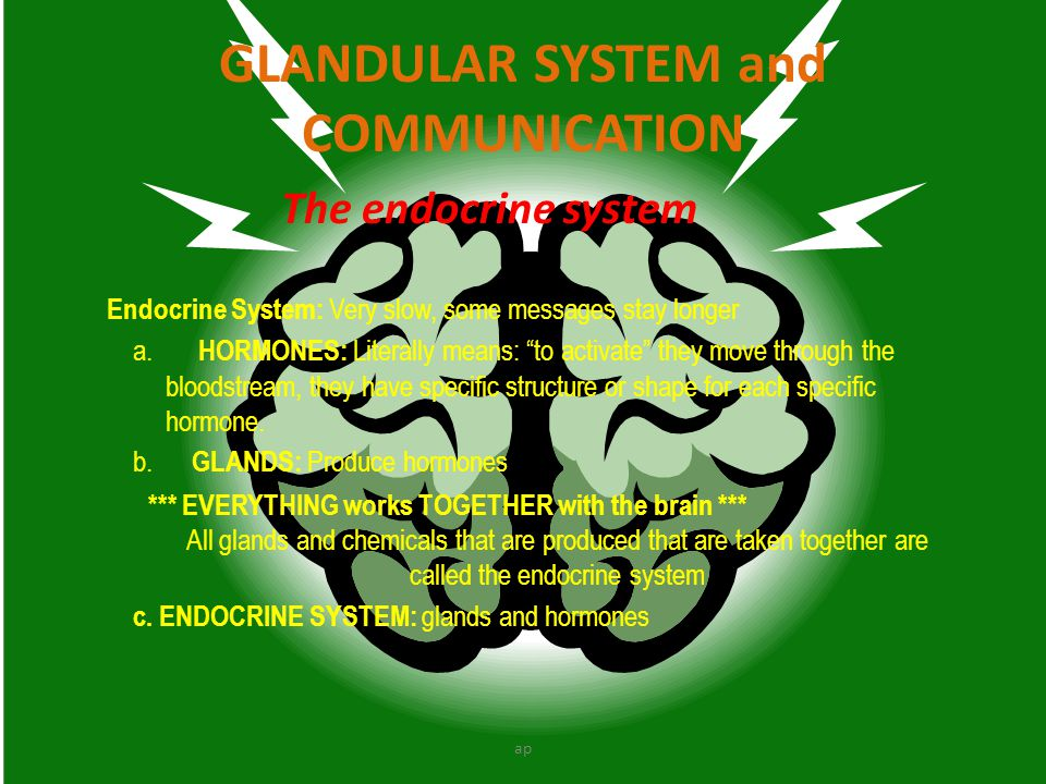 GLANDULAR SYSTEM and COMMUNICATION