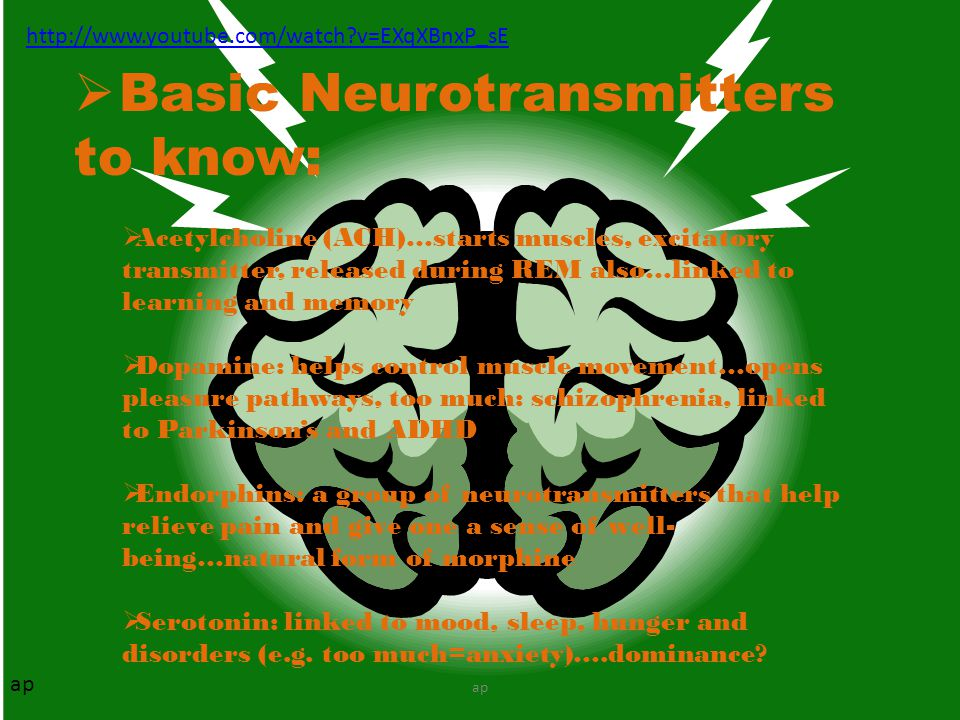 Basic Neurotransmitters to know: