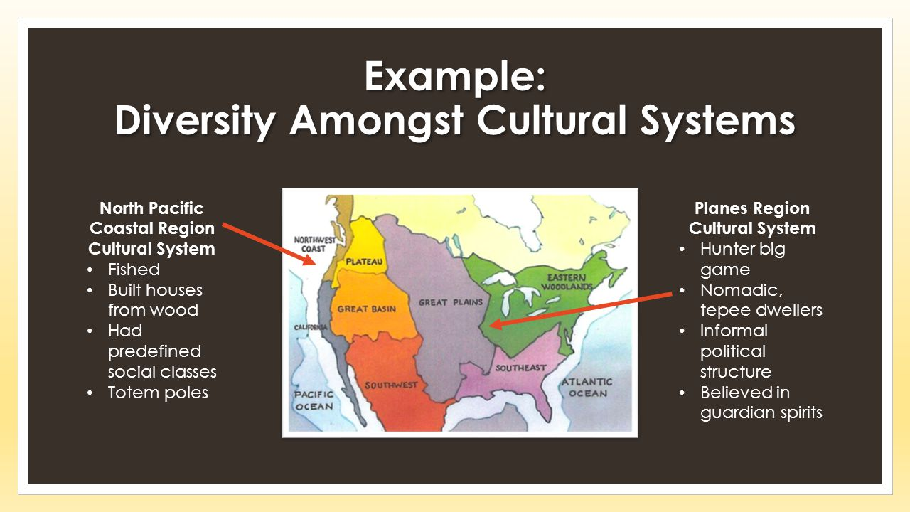Example: Diversity Amongst Cultural Systems