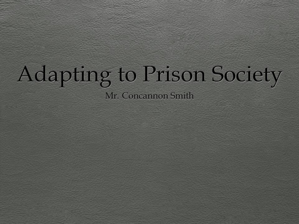 Adapting to Prison Society