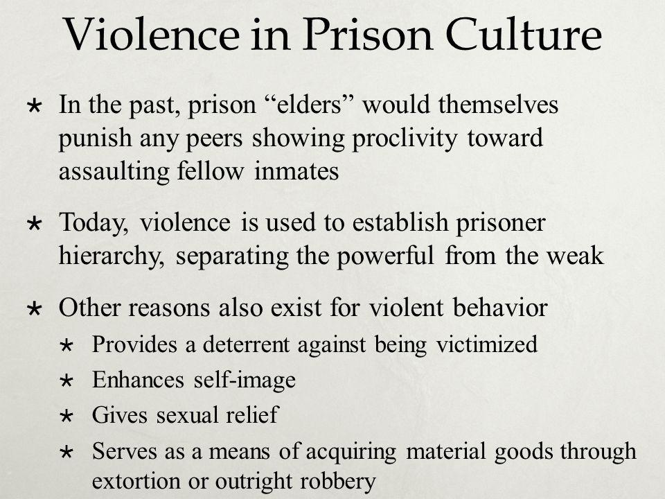 Violence in Prison Culture