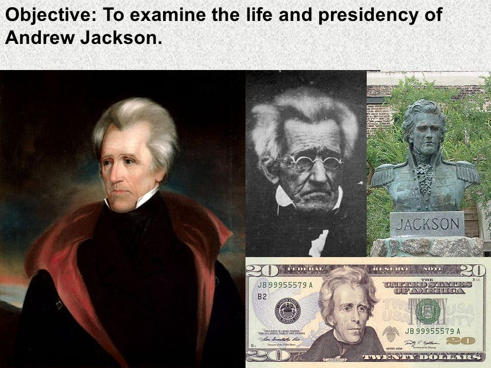 an introduction to the life of andrew jackson Andrew jackson the president - read all about information on andrew jackson on the white house website andrew jackson's home, the hermitage - here is a great website with information and photos of the hermitage.