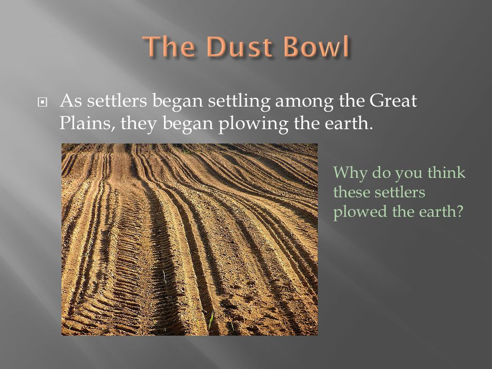 The Dust Bowl As settlers began settling among the Great Plains, they began plowing the earth.