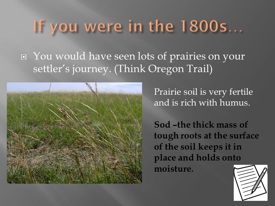 If you were in the 1800s… You would have seen lots of prairies on your settler's journey. (Think Oregon Trail)