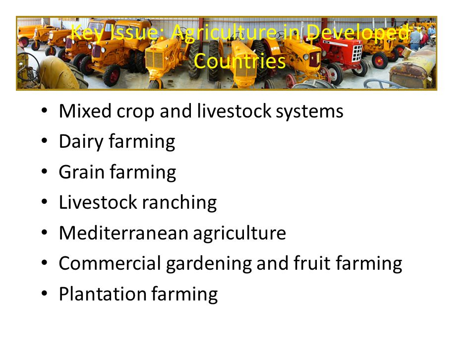 Key Issue: Agriculture in Developed Countries