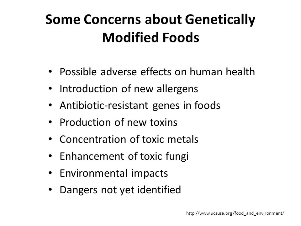 Some Concerns about Genetically Modified Foods