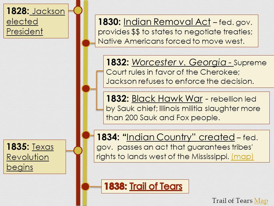 1828: Jackson elected President