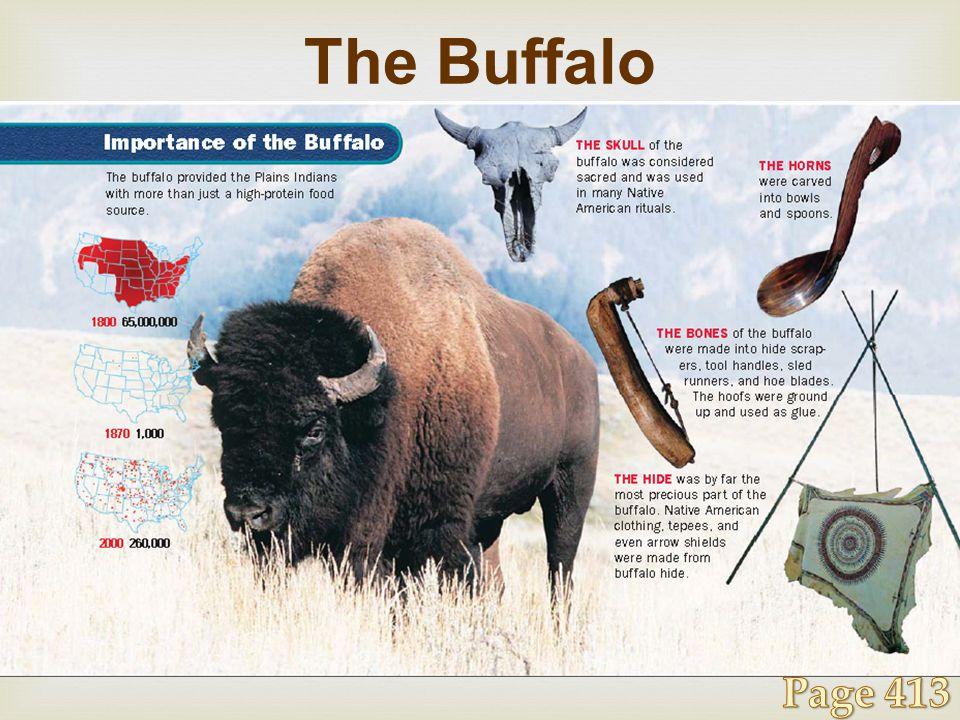 The Buffalo Page 413