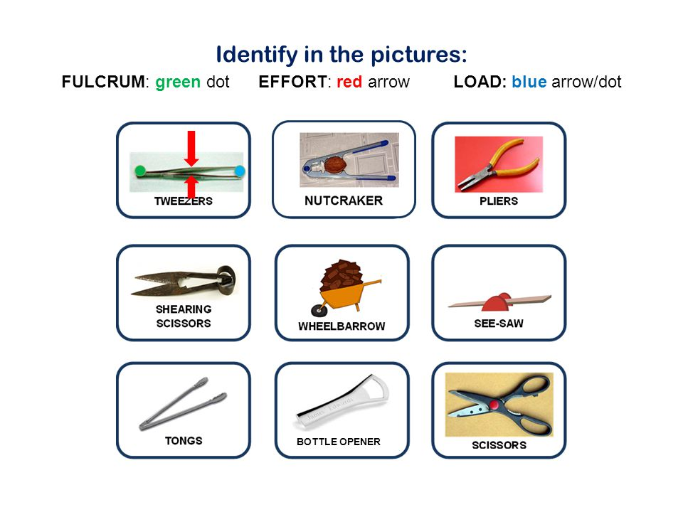 Identify in the pictures: FULCRUM: green dot EFFORT: red arrow LOAD: blue arrow/dot