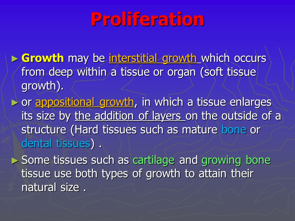 Proliferation Growth may be interstitial growth which occurs from deep within a tissue or organ (soft tissue growth).