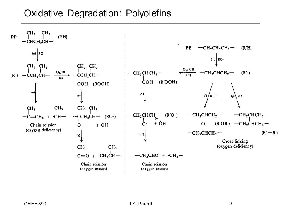 Oxidative Degradation: Polyolefins