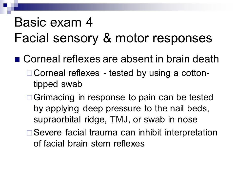 Basic exam 4 Facial sensory & motor responses