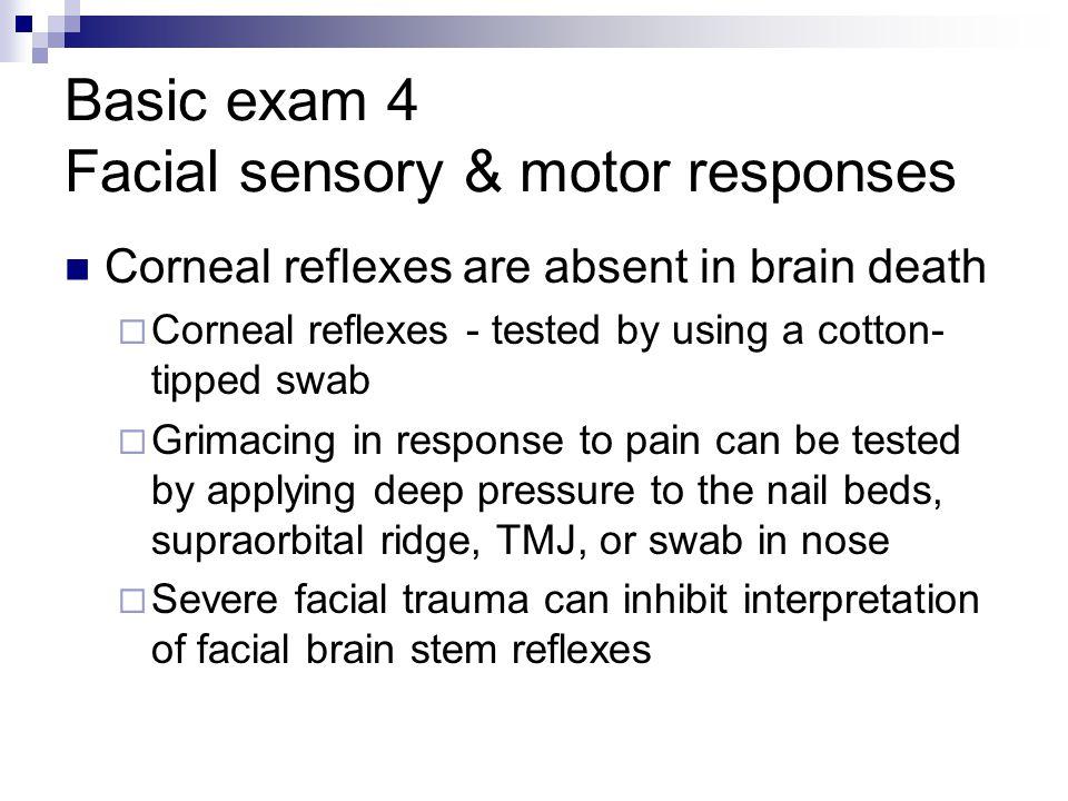 Basic exam 4 Facial sensory & motor responses