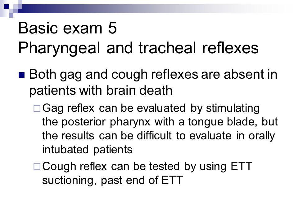 Basic exam 5 Pharyngeal and tracheal reflexes