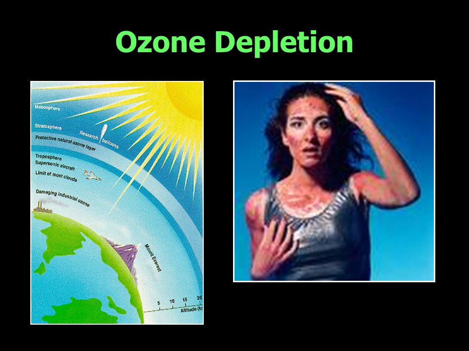 Ozone Depletion Think back about the ozone depletion debate in mid 1980s.