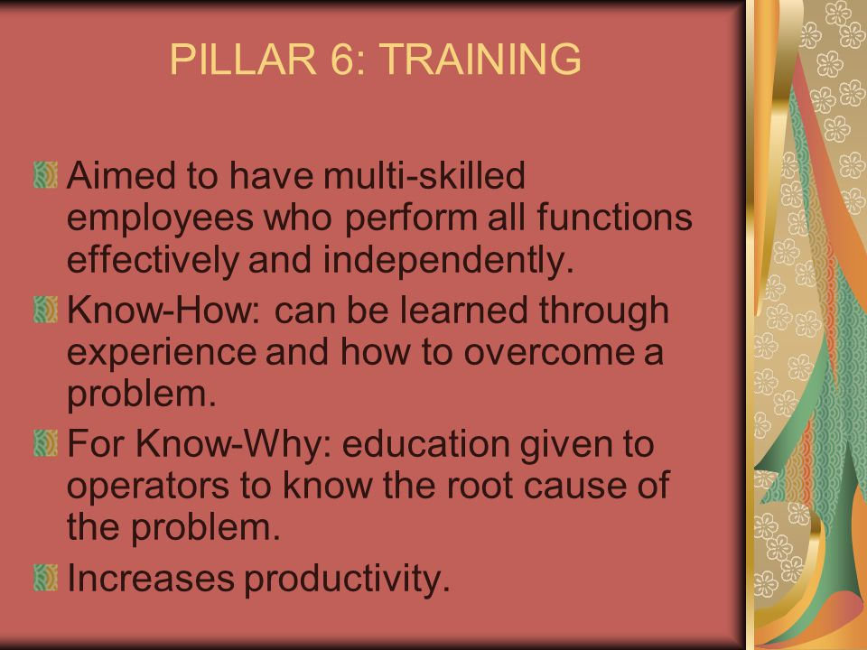 PILLAR 6: TRAINING Aimed to have multi-skilled employees who perform all functions effectively and independently.