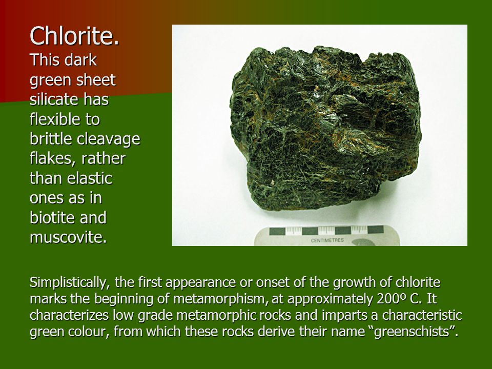 Chlorite. This dark green sheet silicate has flexible to brittle cleavage flakes, rather than elastic ones as in biotite and muscovite.