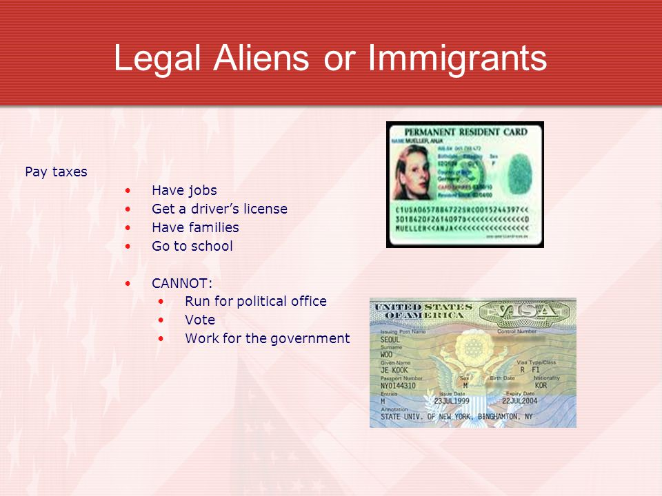 Legal Aliens or Immigrants