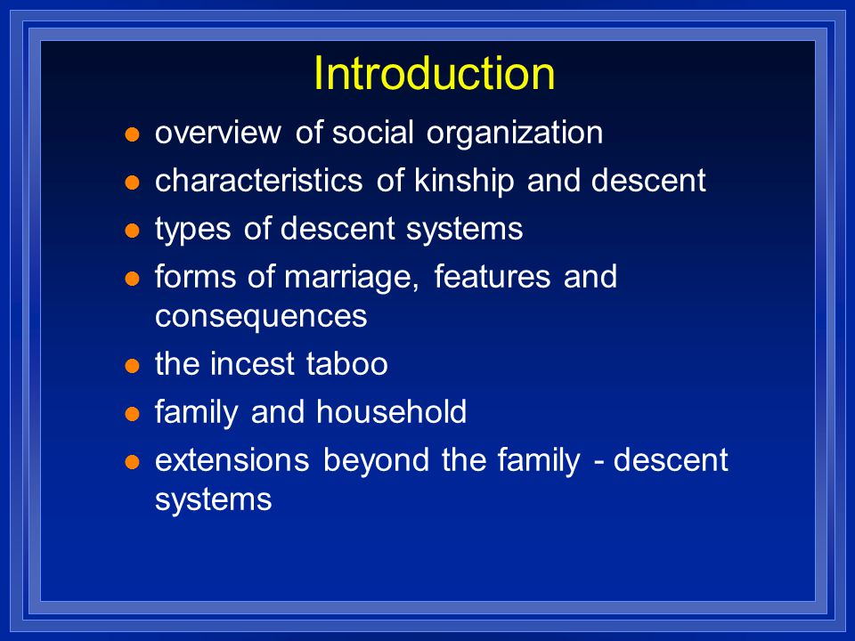 Introduction overview of social organization