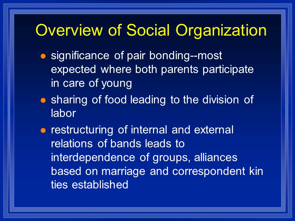 Overview of Social Organization