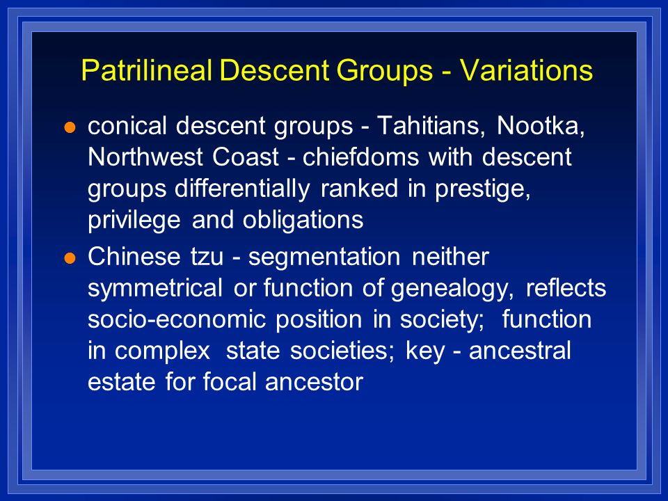 Patrilineal Descent Groups - Variations