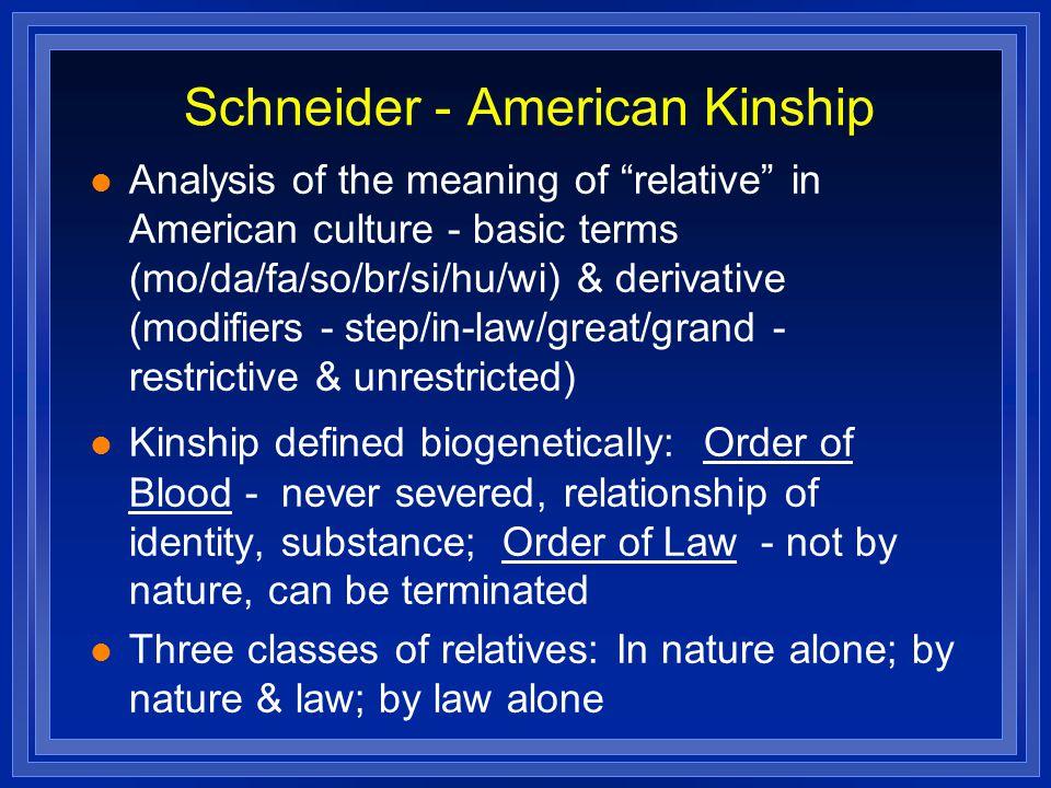Schneider - American Kinship