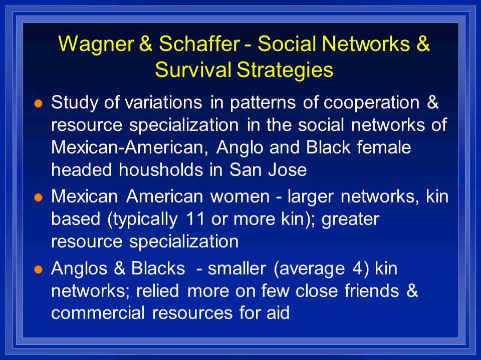 Wagner & Schaffer - Social Networks & Survival Strategies