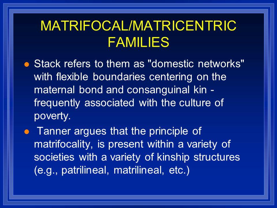MATRIFOCAL/MATRICENTRIC FAMILIES